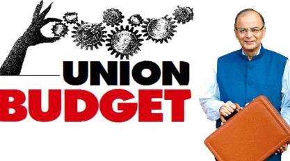Kendriya Aam Budget Hindi