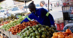 Street-Vendors loan yojana mp portal